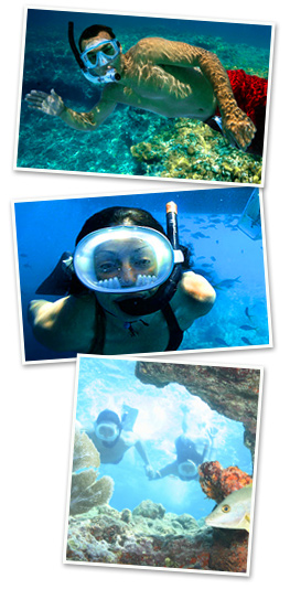 2 stop snorkeling in key west trip