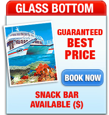 Key West Glass Bottom Boat